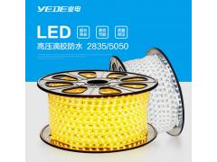 业电照明LED软灯带2835双排灯带