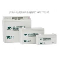 台湾赛特蓄电池BT-HSE-100-6