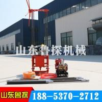 直供QZ-2B汽油机轻便取样钻机 小型勘探岩心钻机真实惠