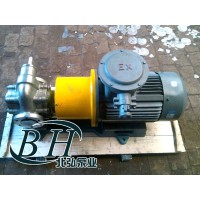 KCB不锈钢磁力齿轮泵