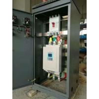 供应320kW罗卡牌软启动柜,轧钢机软起动柜厂家