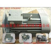 VEM标准三相异步电机